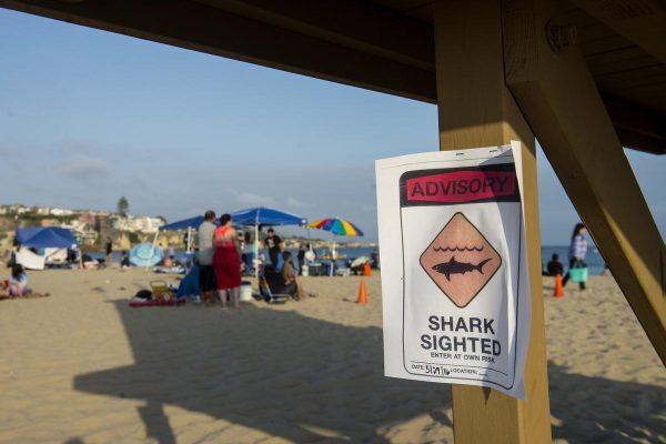 Aviso na Praia